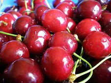 Free Cherries Royalty Free Stock Image - 5257076