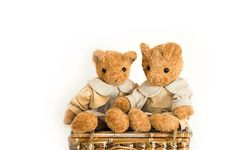 Free Teddy Bears Stock Photo - 5259170