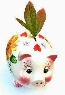 Free Ecologist S Money-Box Stock Image - 5259541