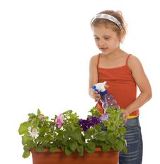 Free Young Girl Watering A Flower Stock Image - 5259701