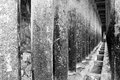 Free Corridor Of Concrete Pillars Black And White Royalty Free Stock Images - 52521069