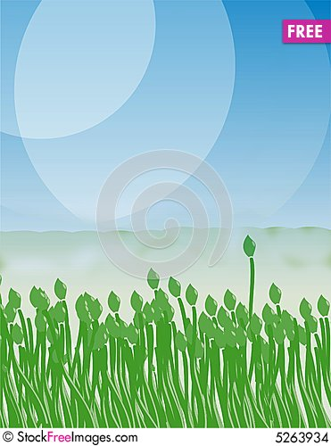 Free Green Tulip On The Blue Sky Stock Images - 5263934