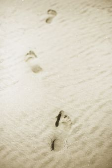 Free Footpints In Sand Royalty Free Stock Photography - 5260677