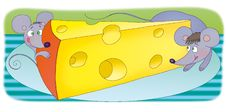 Free Cheese Royalty Free Stock Images - 5260799
