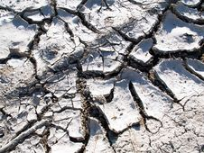 Free Dry Out Lake Bed Texture Stock Images - 5261824