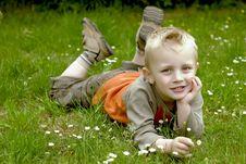 Free Happy Boy Royalty Free Stock Photo - 5264295