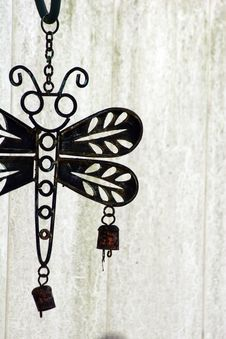 Free Iron Butterfly Royalty Free Stock Photos - 5265218