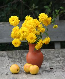 Free Yellow Flowers Stock Image - 5265551