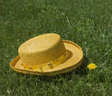 Free Hat And Dandelion Royalty Free Stock Image - 5267236