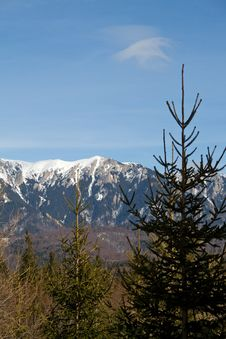Free Winter Landscape Stock Photo - 5267580