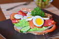 Free Fresh And Healthy Sandwich With Salami And Vegetables On A Plate Royalty Free Stock Photo - 52640445