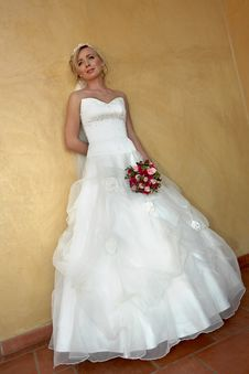 Free Wed Dress Royalty Free Stock Photography - 5270587
