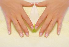 Free Hand Manicure Royalty Free Stock Photos - 5272168