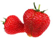 Free Strawberry On White Royalty Free Stock Photography - 5273107