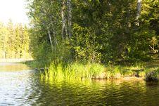 Free Lake And Nature Royalty Free Stock Image - 5274596