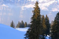 Free Winter Scene In Swiss Alps Royalty Free Stock Photos - 5275318