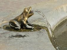 Frog Fountain Stock Photography
