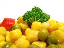 Free Vegetable Salad Stock Image - 5275941