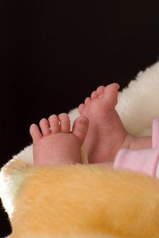 Free Child S Leg Stock Photos - 5275963