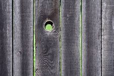 Free Knothole Royalty Free Stock Photography - 5276917