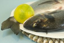 Free Fish And Lemon Royalty Free Stock Images - 5277689