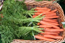 Free Bunch Of Whole Carrots Royalty Free Stock Images - 5278019