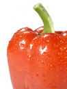 Free Bell Pepper Stock Photo - 5288150