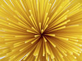 Free Top Spaghetti Royalty Free Stock Photography - 5289057