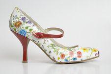 Free Unique Mary Jane High Heel Shoe Stock Photo - 5282120