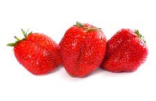 Free Fresh Strawberry Stock Photography - 5282272