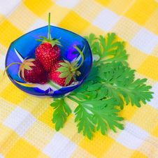 Free Three Strawberries Lying On Plate Royalty Free Stock Photo - 5284635