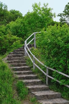Free Stairs In The Forest Stock Image - 5285811