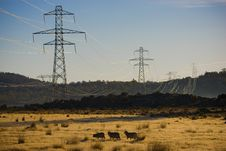 Free Power Pylons Royalty Free Stock Image - 5286596