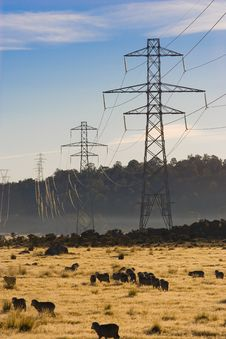 Free Power Pylons Royalty Free Stock Photo - 5286605