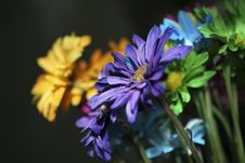 Free Colorful Bouquet Stock Images - 5286624
