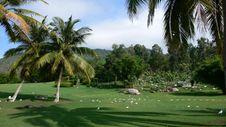Free My Dream Landscape Stock Photo - 5287030
