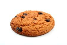 Free Oatmeal Cookie Stock Photography - 5287162