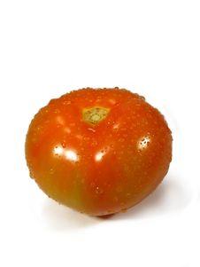 Free Isolated Tomatoe Royalty Free Stock Photography - 5288097