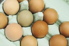 Free Fresh Free-range Chicken Eggs Royalty Free Stock Photo - 5288335
