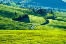 Free Italian Fields Royalty Free Stock Photos - 5289058