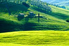Free Italian Fields Royalty Free Stock Photography - 5289087