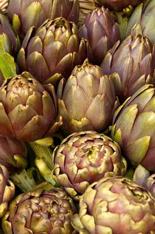 Free Artichokes Royalty Free Stock Images - 5289559