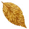 Free Yellow Golden Dry Leaf, Vintage Element Royalty Free Stock Photo - 52844185