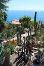 Free Exotic Garden Stock Photography - 5290152