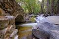 Free Stone Bridge In The Forest Stock Photos - 5293913