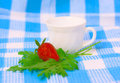 Free Strawberry And Cup On Fabric Background Royalty Free Stock Photo - 5295965