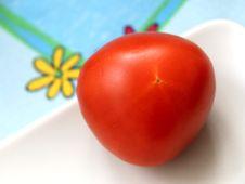 Free Tomato Stock Photo - 5291030