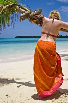 Free Girl And Palm Tree Royalty Free Stock Images - 5291049