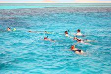Free Snorkeling Royalty Free Stock Image - 5291096