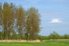 Free Summer Landscape Stock Image - 5292121